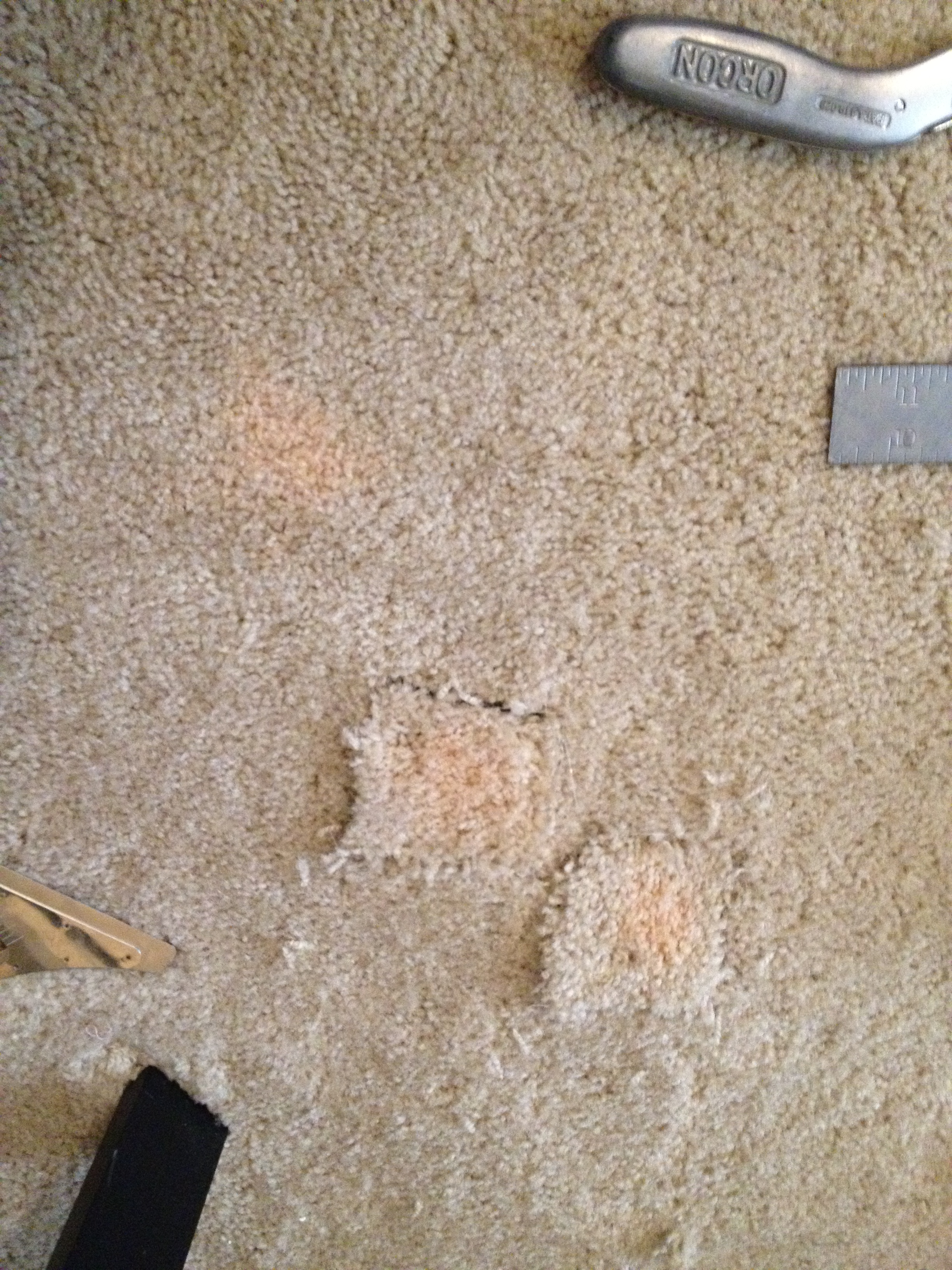 Bleach Stains Never Come Out By Cleaning Indianapolis Carpet Repair Makes It New Indianapolis Carpet Repair
