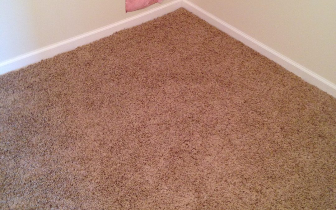 Fishers Carpet Installation