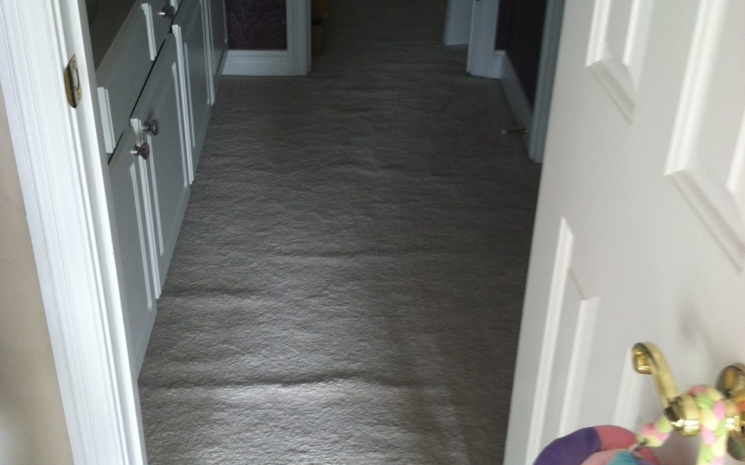Carpet Restretch in Zionsville, IN