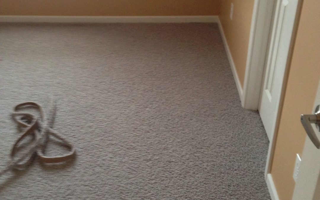 Carpet Buckle Restretch in Plainsfield, IN