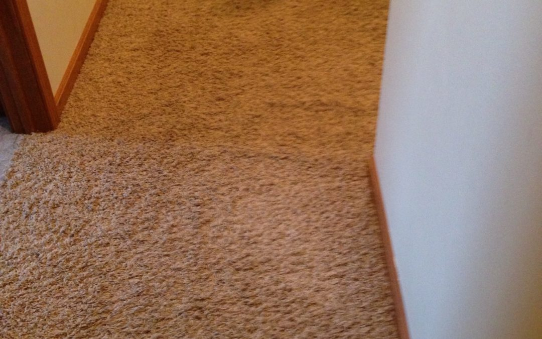 Carpet Restretch in Monrovia, IN.  Indianapolis Carpet Repair Goes The Extra Mile!