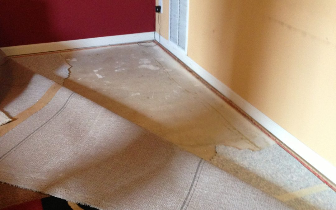 AC Flood Damages Carpet in Indianapolis