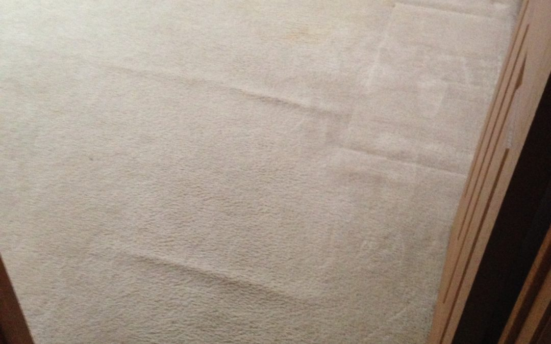 Carpet Ripples in Bedroom of Noblesville Home